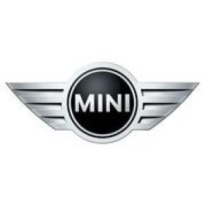 MINI (3)